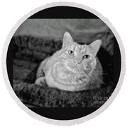 Round Beach Towel featuring the photograph My True Love Revisited by Luther Fine Art