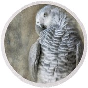 Mysterious Parrot Round Beach Towel
