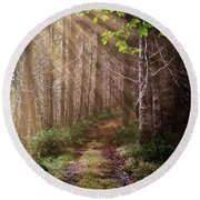 Round Beach Towel featuring the photograph Mystery At Dawn by Debra and Dave Vanderlaan