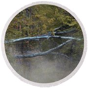 Round Beach Towel featuring the photograph Mystery In The Fall by Skip Willits