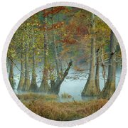 Round Beach Towel featuring the photograph Mystical Mist by Iris Greenwell