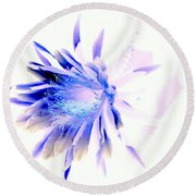 Round Beach Towel featuring the photograph Mystical Phenomenoms Of The Southwest Cactus Orchid by Antonia Citrino