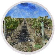 Napa Valley Vineyard - Rows Of Grapes Round Beach Towel