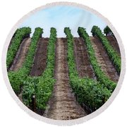 Napa Vineyards Round Beach Towel by Judy Wolinsky