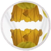 Narcissus Round Beach Towel by Ana Mireles