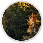 natural Framing Round Beach Towel by Aimelle