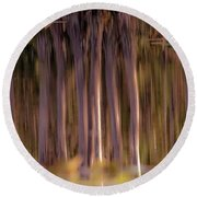 Nature Reflections Round Beach Towel