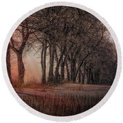 Nature Winter Bare Trees Color  Round Beach Towel