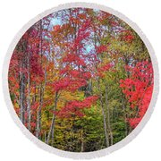 Round Beach Towel featuring the photograph Natures Autumn Palette by David Patterson