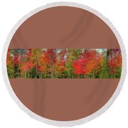 Round Beach Towel featuring the photograph Natures Fall Palette by David Patterson