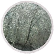 Round Beach Towel featuring the photograph Nature's Frosting by Ellen Levinson