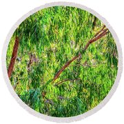 Round Beach Towel featuring the photograph Natures Greens, Yanchep National Park by Dave Catley