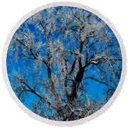 Natures Lace Round Beach Towel