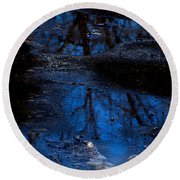 Natures Looking Glass Round Beach Towel