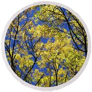 Natures Magic - Original Round Beach Towel