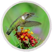 Round Beach Towel featuring the photograph Nature's Majesty by Rodney Campbell