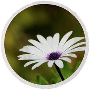 Round Beach Towel featuring the photograph Natures Pure Beauty 01 by Kevin Chippindall