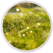 Round Beach Towel featuring the photograph Nature's Sparkles by Nikki McInnes