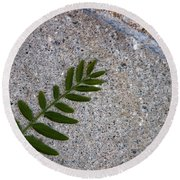 Round Beach Towel featuring the photograph Nature's Trace by Ana Mireles