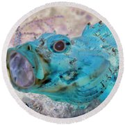 Round Beach Towel featuring the photograph Nautical Beach And Fish #1 by Debra and Dave Vanderlaan