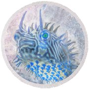 Round Beach Towel featuring the photograph Nautical Beach And Fish #12 by Debra and Dave Vanderlaan