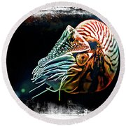 Nautilus Dreams Round Beach Towel