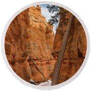Navajo Trail Tree Round Beach Towel