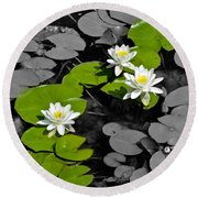 Round Beach Towel featuring the photograph Nenuphar by Gina Dsgn