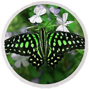 Neon --- Tailed Jay Butterfly Round Beach Towel
