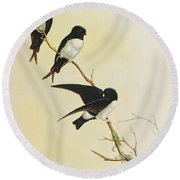 Nepal House Martin Round Beach Towel by John Gould