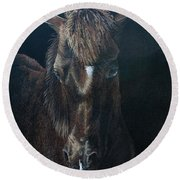 Nervous Colt  Milltown Fair Round Beach Towel