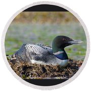 Nesting Loon Round Beach Towel