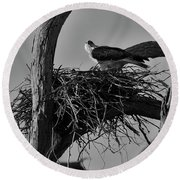 Round Beach Towel featuring the photograph Nesting V2 by Douglas Barnard