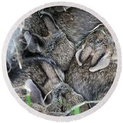 Round Beach Towel featuring the photograph Nestled In Their Den by Laurel Best