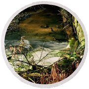 Round Beach Towel featuring the photograph Nestucca Spring by Jerry Sodorff