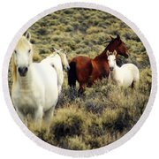 Nevada Wild Horses Round Beach Towel