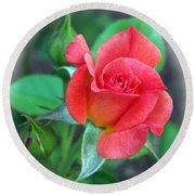 New Life In A Coral Rosebud Round Beach Towel