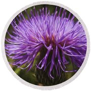 New Mexican Thistle Round Beach Towel