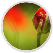 New Orange Poppy Bloom Round Beach Towel