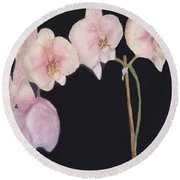New Orchids Round Beach Towel