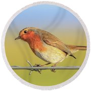 Round Beach Towel featuring the photograph New Year Robin by Roy McPeak