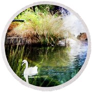 New Zealand Swan Round Beach Towel