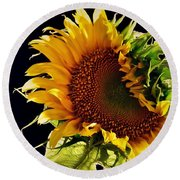 Round Beach Towel featuring the photograph Night Shift by Angela J Wright