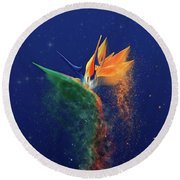 Nightbird Round Beach Towel