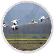 Nine Geese A Flying Round Beach Towel