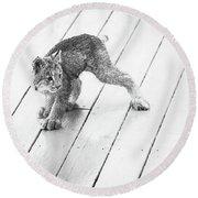 Ninja Lynx Kitty Bw Round Beach Towel