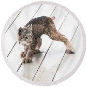 Ninja Lynx Kitty Round Beach Towel