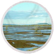 Nisqually Looking North Round Beach Towel