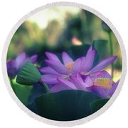 Round Beach Towel featuring the photograph No Mud, No Lotus by Cindy Lark Hartman