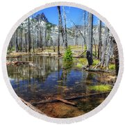 Round Beach Towel featuring the photograph No Name Pond by Cat Connor